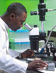 Man using microscope