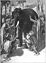 Blind_men_and_elephant4