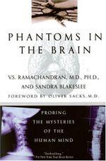 Phantoms-in-the-Brain