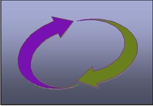 Circle two arrows