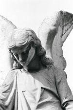 Stone_angel