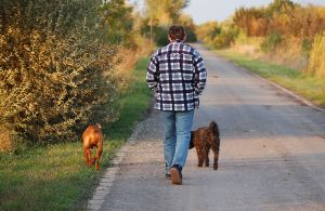 Walking_with_dogs