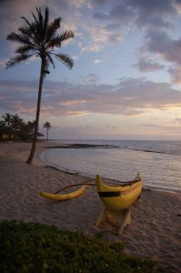 Hawaii_beach