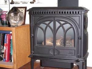 Catfish_waiting_for_heater_2