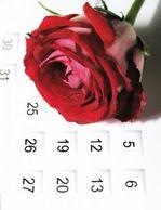 Rose_on_calendar