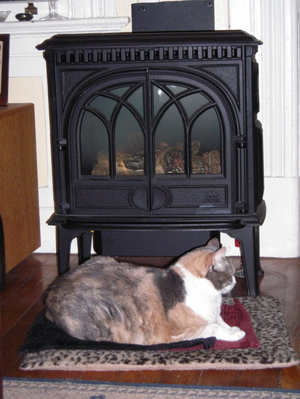 Lydia_heater